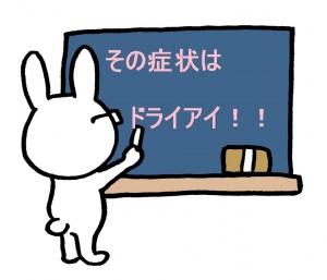 ドライアイウサギ